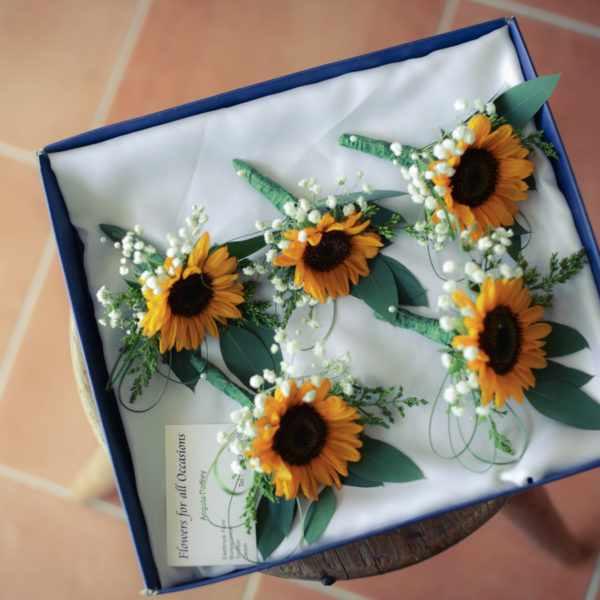 Wedding photographers in Somerset, Wedding photography, wedding photographer.