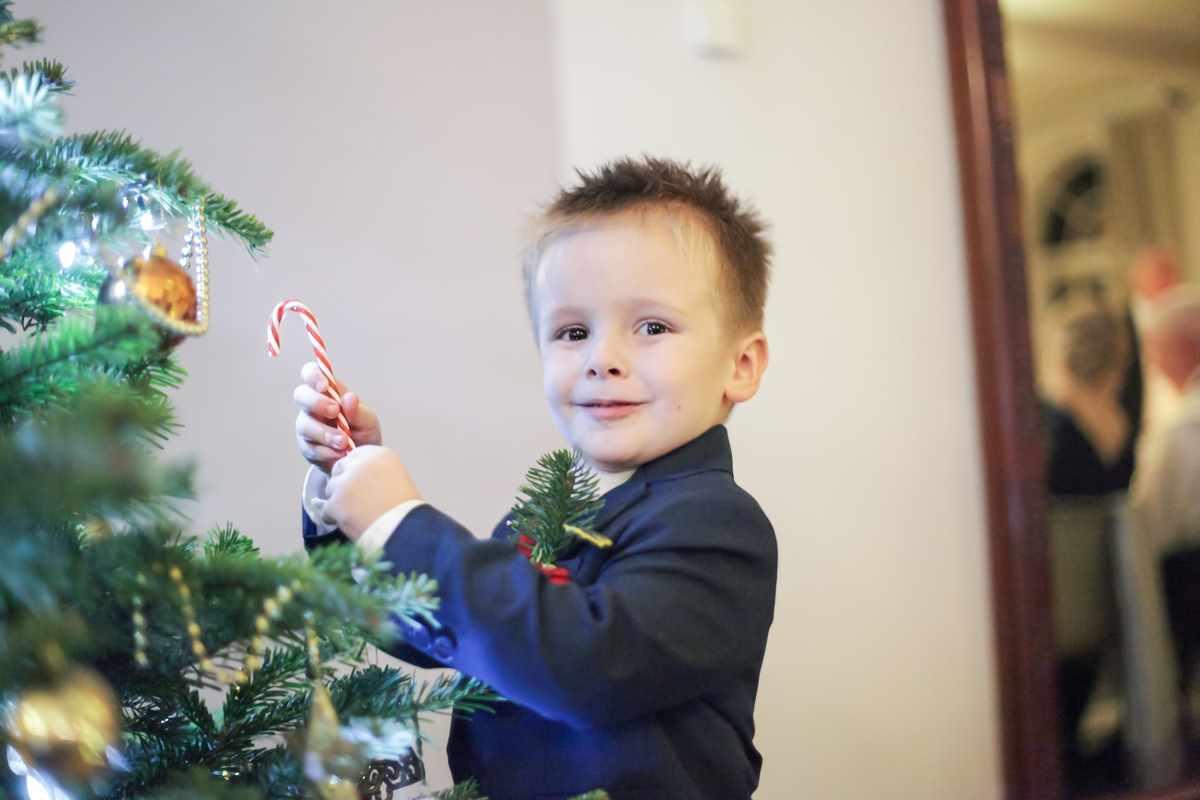 cornwall wedding photographers,Fowey Hall, Cornwall weddings, wedding photography, child picking treats off the tree