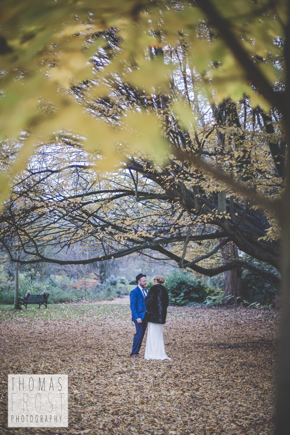 Just the couple under a tree at Prittlewell Priory Wedding, Southend-on-sea.